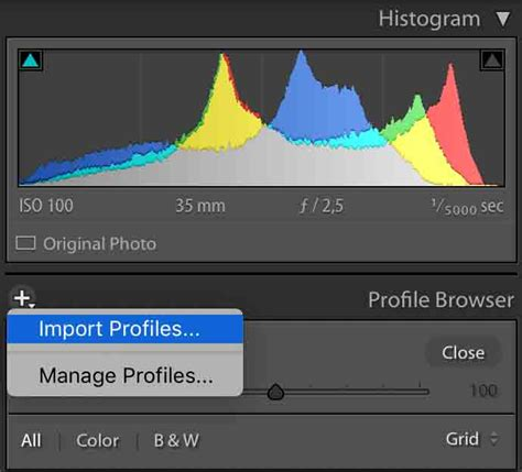 How To Install Lightroom Presets - The Easiest Way